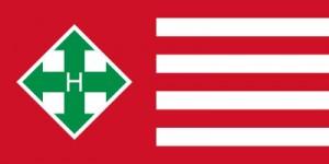 Bandera de la Cruz Flechada Húngara. Se parecen un webo eennnn?